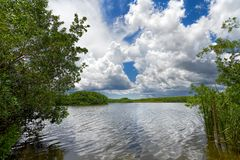 Lac everglades Photo libre de droits