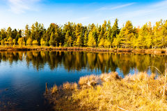 Lac fall Images stock