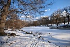 Lac figé dans Central Park Image libre de droits