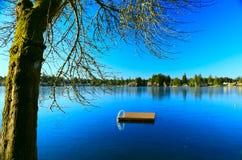 Lac figé de l'hiver Photographie stock libre de droits