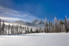 Lac figé de montagne couvert de neige Photographie stock libre de droits