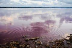 Lac flats de sel Images libres de droits