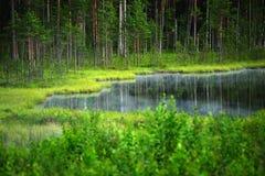 Lac forest image libre de droits