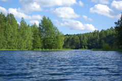Lac forest Image stock