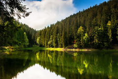 Lac forest Images stock