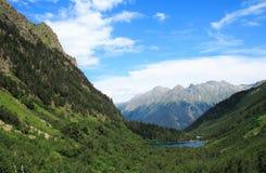 Lac forest Images libres de droits