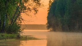 Lac forest dans le matin tranquille d'aube ensoleillée Images stock