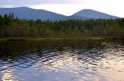 Lac forest en été Photographie stock