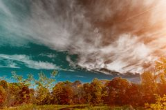 Lac forest en automne Sur les banques élevez les arbres avec les feuilles jaunes Beau paysage Photos stock