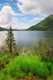 Lac, fougère et montagnes bleus. Photographie stock libre de droits