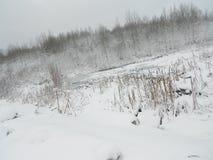 Lac froid de neige Image stock