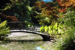 Lac garden photographie stock libre de droits