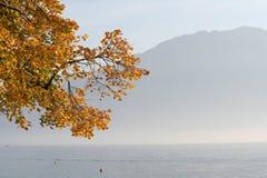 Lac geneva Photo stock