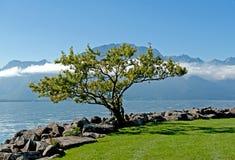 Lac Geneve à Montreux Photographie stock
