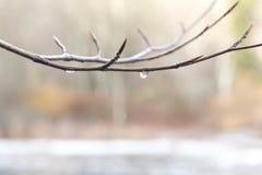 Lac glacé dans le trentino Image libre de droits