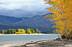 Lac Granby en automne, le Colorado photos libres de droits