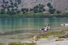 Lac greece Images libres de droits
