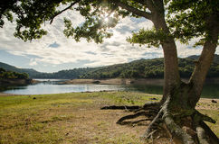 Lac Gusana, Sardaigne, Italie Image stock