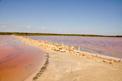 Lac Halite en stationnement national de Coorong Photos stock