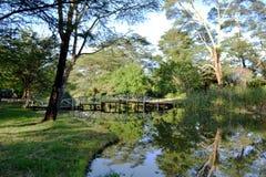 Lac i rzeka Obraz Stock