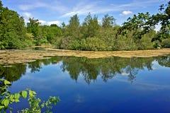 Lac idyllique Image stock