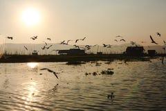 Lac Inle, Myanmar - 25 février 2014 : Coucher du soleil sur le lac Inle, Myanmar Images libres de droits