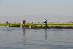 Lac Inle, Myanmar - 25 février 2014 : Travail de personnes d'Intha sur le flottement Photos libres de droits