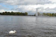 Lac intérieur Alster photos libres de droits
