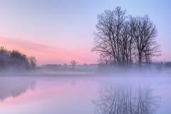 Lac jackson Hole d'aube Photographie stock