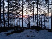 Lac Juojarvi Image stock