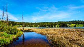 Lac Kidd en Colombie-Britannique, Canada photo stock