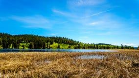 Lac Kidd en Colombie-Britannique, Canada images libres de droits