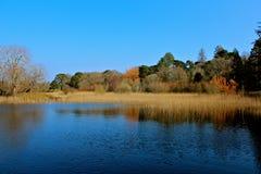 Lac Killarney photographie stock libre de droits