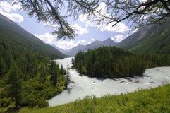 Lac Kucherlinskoe, l'Altay, Russie Images libres de droits