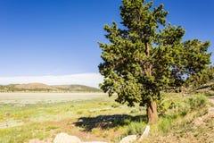 Lac la Californie big Bear Image libre de droits