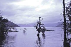 Lac Lacar images stock