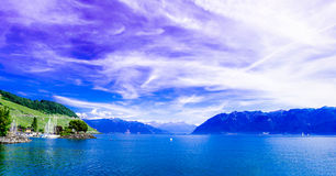 Lac Leman by the Lavaux Vineyards. Stock Images