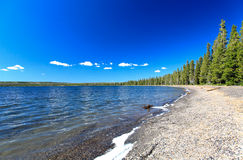 lac lewis yellowstone Photographie stock