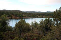 Lac lynx, Prescott, le comté de Yavapai, Arizona photographie stock libre de droits