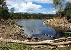 Lac lynx, Prescott, le comté de Yavapai, Arizona photographie stock