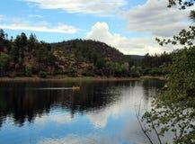 Lac lynx, Prescott, le comté de Yavapai, Arizona photo stock