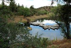 Lac lynx, Prescott, le comté de Yavapai, Arizona photos stock