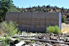 Lac lynx, secteur de garde forestière de Bradshaw, Prescott National Forest, état de l'Arizona, Etats-Unis image libre de droits