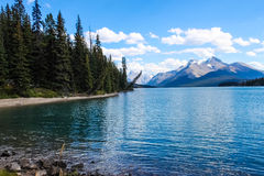 Lac Maligne, stationnement national de jaspe Photo stock