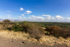 Lac Manyara Images stock