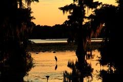 Lac Martin sunset Photo libre de droits