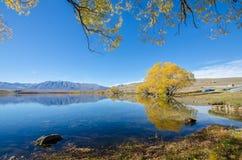 Lac McGregor, région de Cantorbéry, Nouvelle-Zélande Image libre de droits