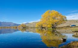 Lac McGregor, région de Cantorbéry, Nouvelle-Zélande Images libres de droits