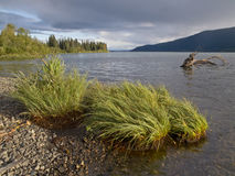 Lac Meziadin Images stock