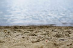 Lac Miedwie, Stargard, Pologne Paysage de lac et de sable de foyer sélectif photos libres de droits